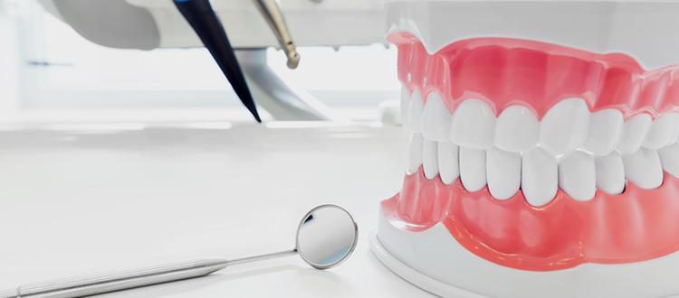 虫歯や歯周病を防ぎたい~予防歯科~